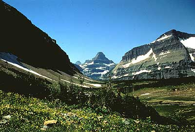 Mt. Reynolds from Logan Pass on Going to the Sun Road, Glacier National Park